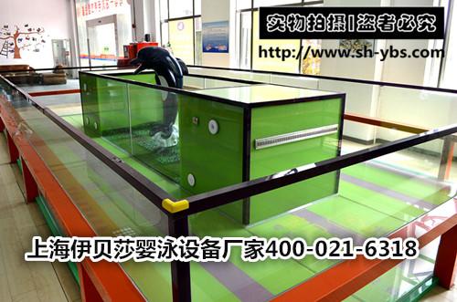 (定制)新款玻璃环流儿童游泳池(双设备间)